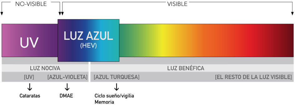 Espectro de la luz azul - Blueberry Glasses